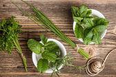 Fresh herbs — Stock Photo