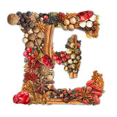 Spices letter — Stock Photo
