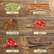 Different spices — Stock Photo #23361262