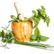 Herbs in mortar  — Stock Photo
