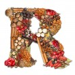 Spices letter — Foto de Stock
