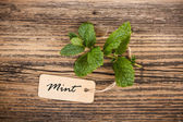 Mint with label — Fotografia Stock
