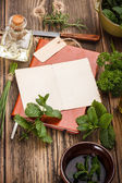Fresh herbs — Stok fotoğraf