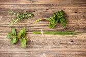 Set of green herbs — Stock Photo