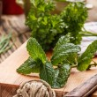 Fresh mint — Stock Photo