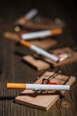 Cigarette in mousetrap — Fotografia Stock