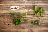 Green herbs — Foto Stock