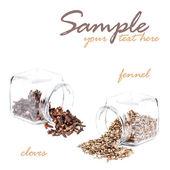 Frascos con semillas — Foto de Stock