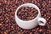 Cup with coffee beans — ストック写真
