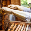Working apiarist — Stock Photo #26684305