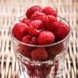 Fresh red raspberries — Stock Photo