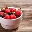 Mixed berries — Stock Photo #27884519