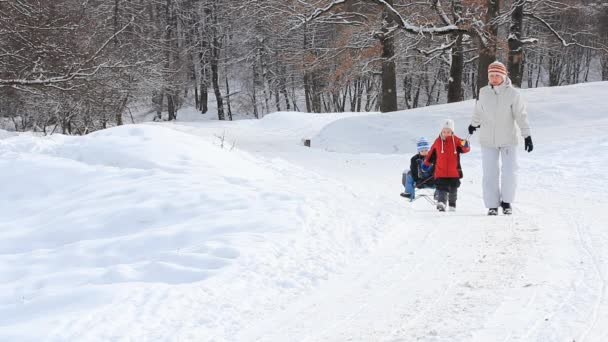 Winter time — Vídeo de stock