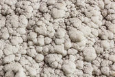 Salt on wall — Stock Photo