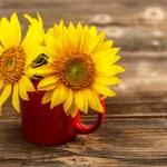 Yellow sunflowers — Stock Photo