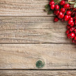Hawthorn berries — Stockfoto