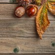 Autumn leaves and fresh chestnuts — Stock Photo #34623899