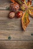 Hojas de otoño y castañas frescas — Foto de Stock