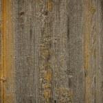 Wood plank — Stock Photo #35496885