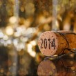 Champagne cork — Stock Photo #35789341