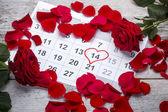 Red roses lay on the calendar — Stock Photo
