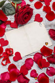 Pétalos y rosa roja — Foto de Stock