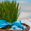 Stock Photo: Green grass with ribbon