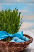 Green grass with ribbon — Stock Photo