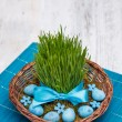 Stock Photo: Easter quail eggs