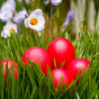 Stock Photo: Red Easter eggs