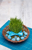 Easter quail eggs — Stock Photo
