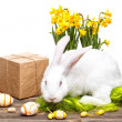 Easter decoration — Stock Photo #42455611
