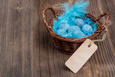 Blue quail eggs — Stock Photo