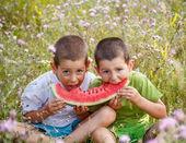 Children eating red watermelon — Stock Photo