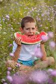 Boy eats a watermelon — Stock Photo