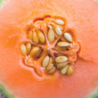 Stock Photo: Detail of honeydew melon