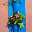 Flower pots on a wall - Stock Photo
