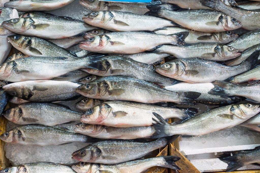 Fresh fish offer for sale stock photo elxeneize 19343569 for Stock fish for sale