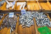 Fresh fish at the fish market — Stock Photo