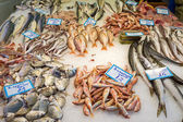 Fresh fish at a market — ストック写真