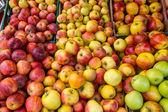 Fresh apples — Stockfoto