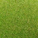 Green glittering background — Stock Photo