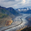 The Altesch glacier in the alps — Stock Photo