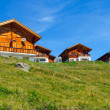Wooden houses in the alps — Stock Photo