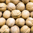 Ripe walnuts — Stock Photo