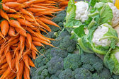 Carrots, broccoli and cauliflower — Stockfoto