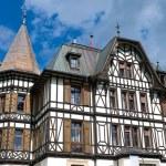 Villa Cassel in the Swiss alps — Stock Photo #40143653