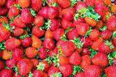 Strawberry background — Stock Photo