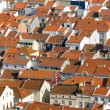 Rooftops in Nazare, Portugal — Stock Photo #51053287