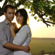 Stok fotoğraf: Sweethearts under tree at sunset